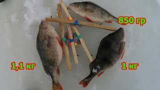 КРУПНЫЕ ОКУНЯ (КАБАНЧИКИ) ЗИМОЙ !!!    ЛОВЛЯ ОКУНЯ НА ЧЕРВЯ .зимняя рыбалка. ЛОВЛЯ ПОСТАВУШКАМИ.