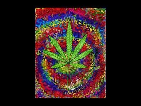 """Zeenan - Progressive Psytrance """"Legalize"""" Set 2014"""