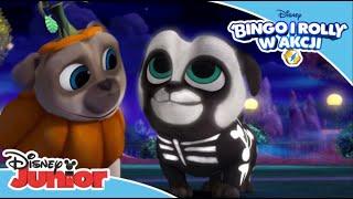 Bingo i Rolly w akcji | Halloweenowa przygoda | Tylko w Disney Junior!