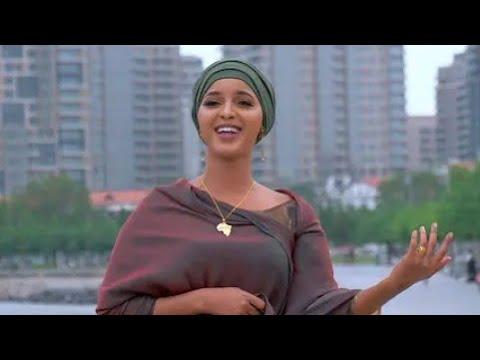 Download Yardar jiya × Alishow (Official Music Audio 2021)