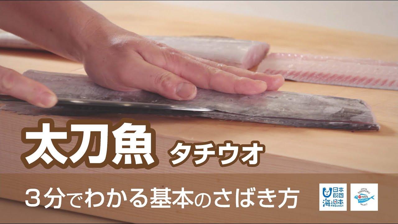アニサキス 太刀魚