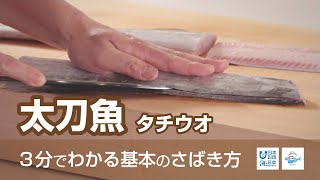 How to filet Cutlassfish | Nippon Sabakeru Project