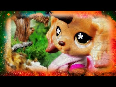 LPS- Hide & Seek -Halloween Film 2015