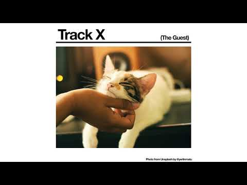 Black Country, New Road - 'Track X (The Guest)' (Official Audio)