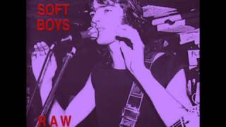 The Soft Boys - The Bells of Rhymney