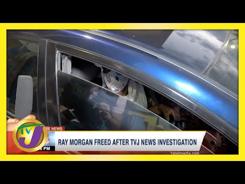 Jamaican Inmate Ray Morgan Freed After TVJ News Investigation   TVJ News