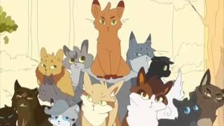 """Трейлер к книгам серии: """"Коты Воители"""""""