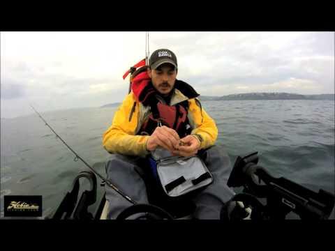 Fishing with Mack - Kayak Fishing Ireland - Cork Harbour Codling