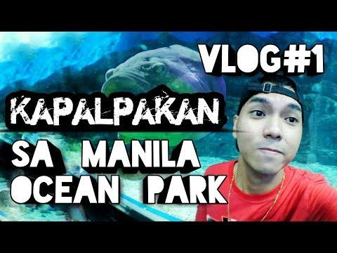 Kapalpakan sa Manila Ocean Park - Vlog # 1