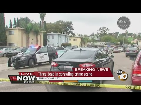 Three dead in Spring valley shooting