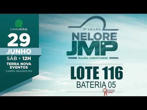 LOTE 116