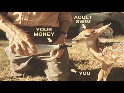 [adult swim] AS and Your Money Deer