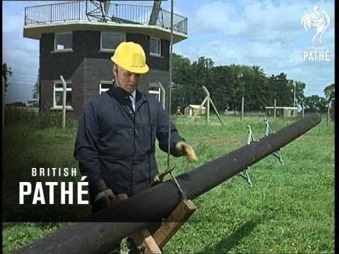 Telegraph Pole Planter (1965)