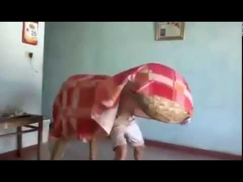 Múa lân siêu bựa – quảng nôm