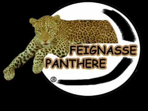 feignasse panthere theme hard rock heavy metal punk 2012 new.wmv