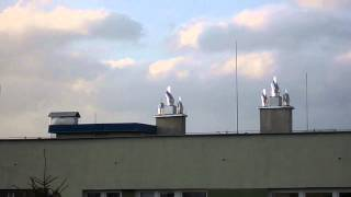 Nasady kominowe typu strażak