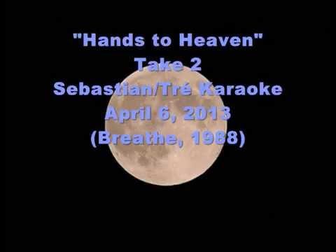 Hands to Heaven (take 2) - Sebastian/Tré404 karaoke