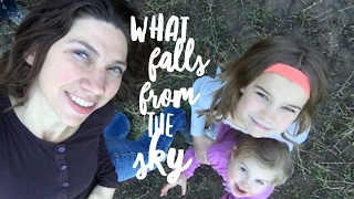 What Falls From the Sky - Esther Emery - Book Trailer - Zondervan