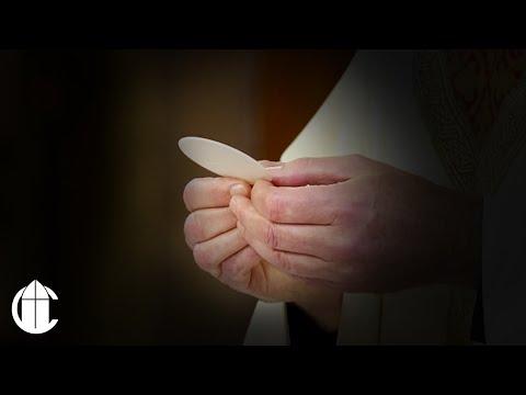 Catholic Mass: 9/17/19   Memorial of Saint Robert Bellarmine