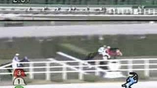 2007年12月1日 阪神4R 障害未勝利 テイエムエース
