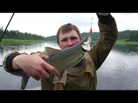 Рыбалка на притоках реки Енисей. Рыбалка на Енисее.