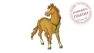 Как поэтапно карандашом нарисовать лошадь для начинающих за 41 секунду(как нарисовать лошадь, как нарисовать лошадь поэтапно, как нарисовать карандашом лошадь, как нарисовать..., 2014-08-07T06:13:53.000Z)