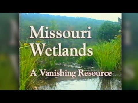 Missouri Wetlands - A Vanishing Resource