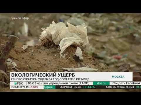 Генпрокуратора России оценила ущерб от экологических преступлений в 12 млрд рублей