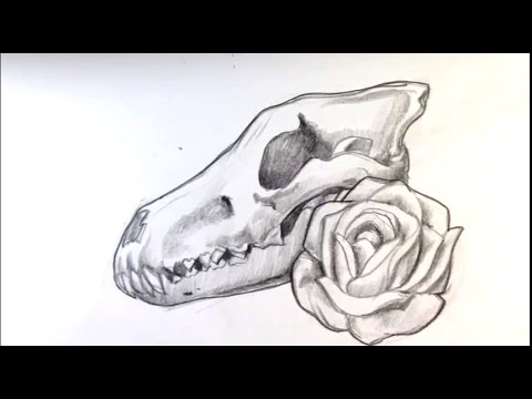 Amazing Drawing A Wolf Skull And Rose Tattoo Draw Tattoo Art Youtube