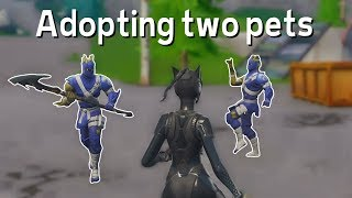 Adopting two enemies in Fortnite duo's