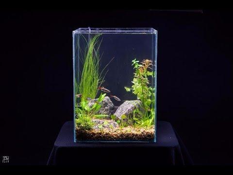 Оформление аквариума Солнечный пляж на 120 литров