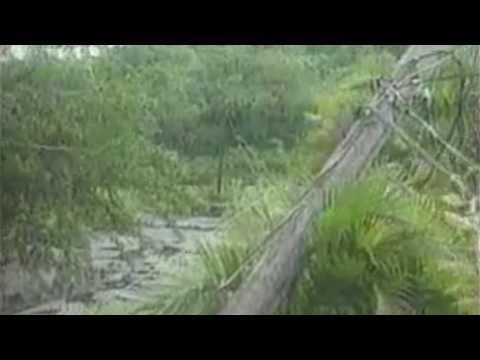 Weather History: Hurricane Lenny 1999