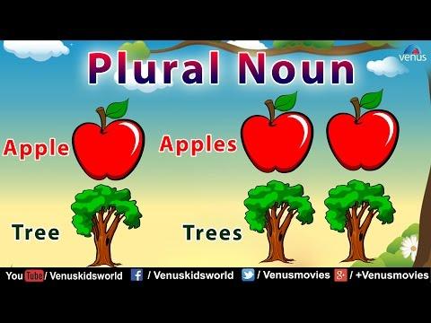 Plural Noun ~ Grammar Class