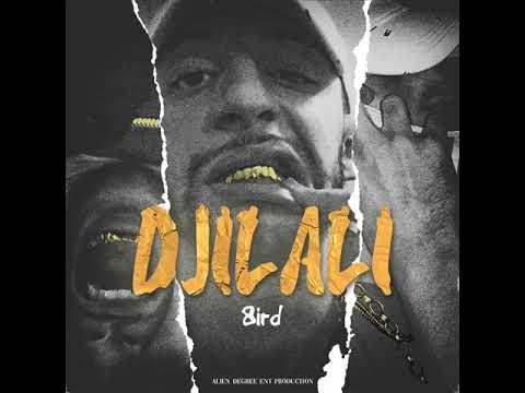 8IRD - DJILALI (Prod. by 8IRD)