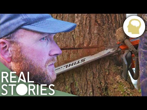 Lumberjack Lives (Man Vs. Nature Documentary) - Real Stories