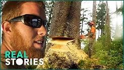 Lumberjack Lives (Man Vs. Nature Documentary) - Real Stories |
