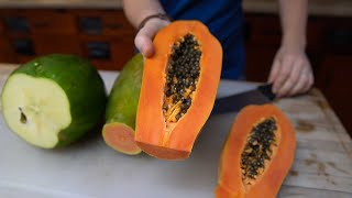Papaya is a MUST-Grow Crop in Florida || Cultivation Info + Cooking Show @HEART Village