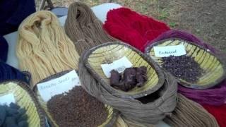 Using Herbs as Dye -- 18th-century Garden Techniques