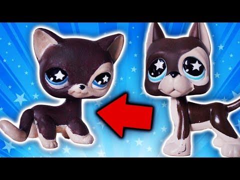 LPS DOG TO CAT CUSTOM! LPS #817 cat| Alice LPS