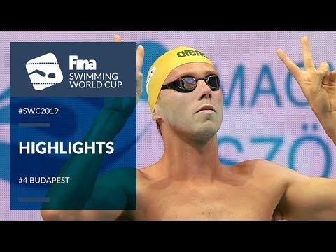 Highlights | Budapest #SWC19 | FINA Swimming World Cup 2019