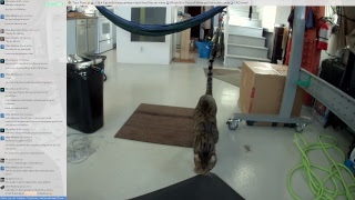 Friday cat-cam CAD, preparing to make the Winch Bot enclosure @scanlime-in-progress