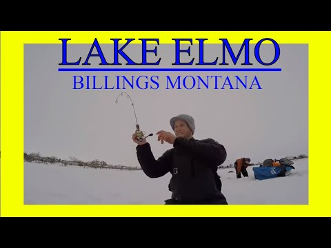 ICE FISHING - LAKE ELMO PERCH- WITH FISHING MONTANA!