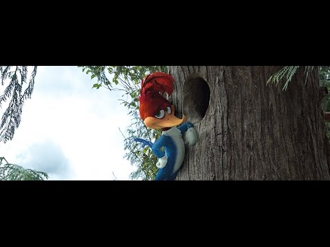 Woody Woodpecker (2017) | Teaser Trailer released at Comic Con Experience Brazil 2016