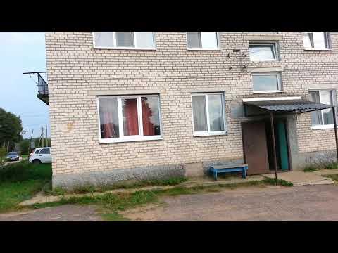 Адрес борделя местечео шелонск