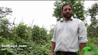 Just Keep Planting with Santiago Juan - Part 1: Introduction