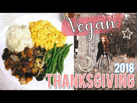 A Typical THEME PARK Thanksgiving | 2018 Vlog 🦃