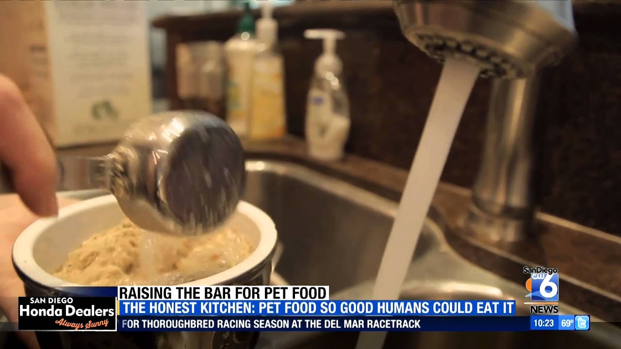 channel 6 san go news reviews the honest kitchen youtube