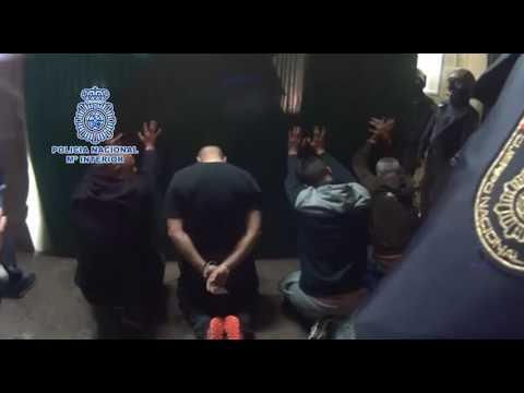 Operación de la Policía Nacional contra las peleas de perros clandestinas