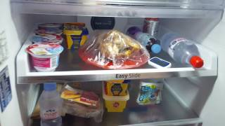 Review of Samsung RT46K6360SL fridge freezer  from AO.com