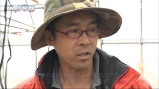 2015年4月放送 「河北農園(綾部市)」 京都の名店のシェフに野菜を届けて...